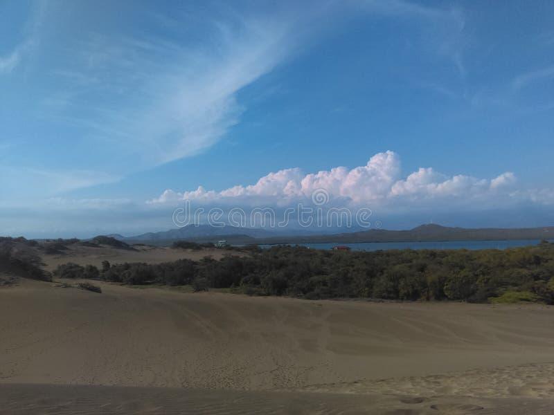 Desert, Woods and Sea stock photos