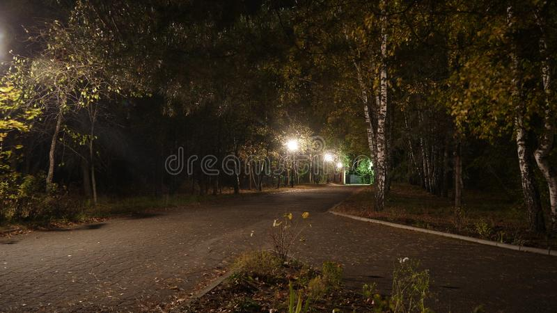 Deserted alley at night. Summer in the black earth. royalty free stock photography