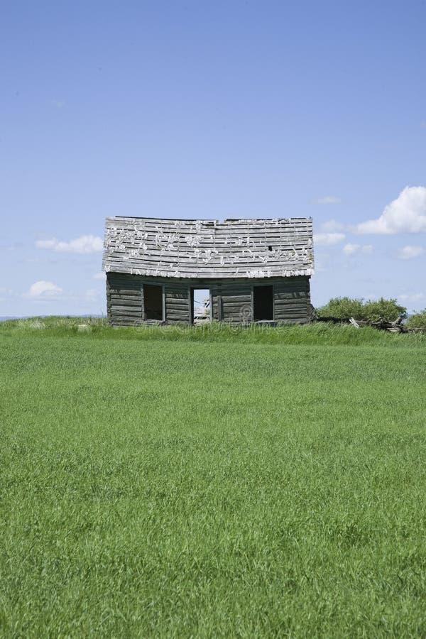 Download Deserted cabin stock image. Image of western, logs, green - 26126627