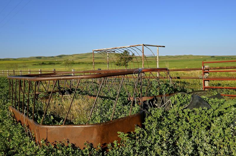 Deserted corral with unused cattle feeders. Old cattle feeder for holding hay for beef animals in an abandoned feedlot is overtaken by weed stock photo