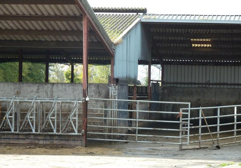 Deserted cow shed on a farm royalty free stock photos