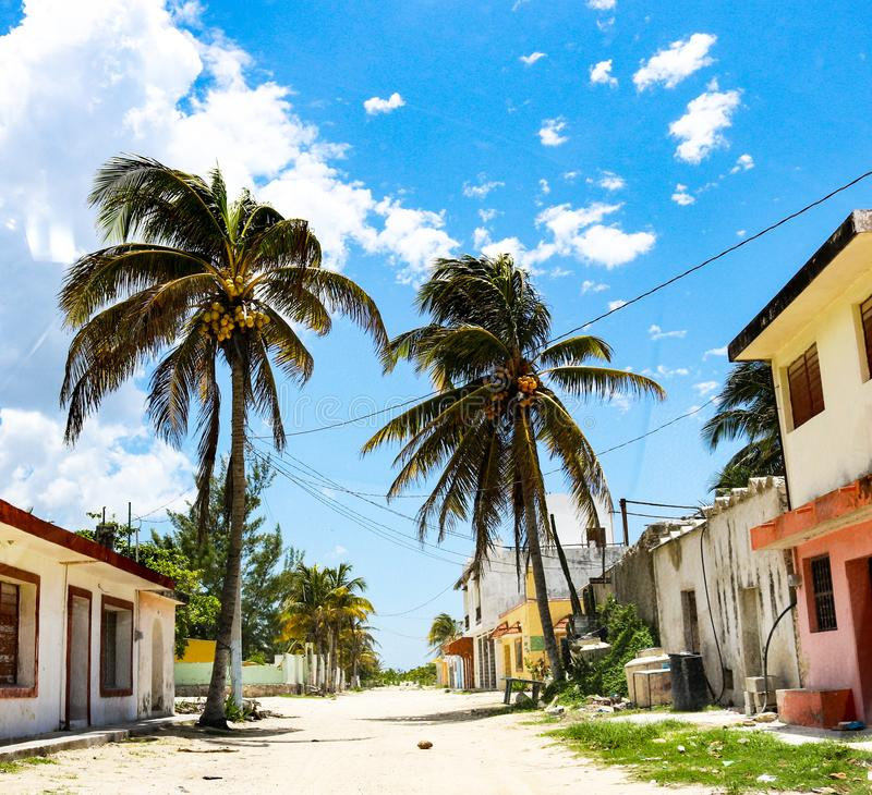 Deserted Mexican dirt road in seaside village with multicolored buildings and tall coconut palms and a coconut laying in the middl stock photography