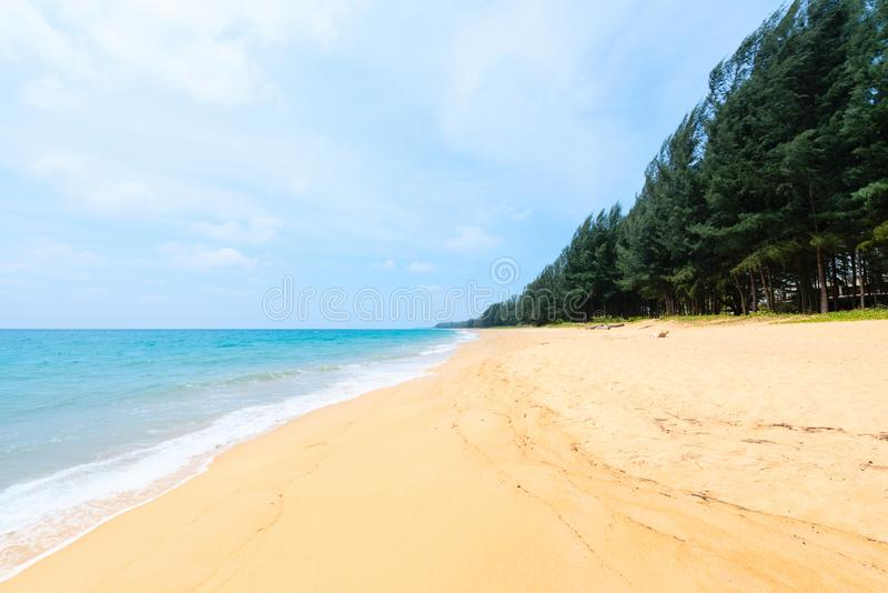 Download Deserted Tropical Sandy Beach Stock Image - Image: 102084427