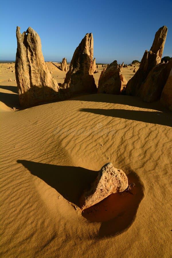 desertera höjdpunkter Nambung nationalpark cervantes Västra Australien australasian royaltyfria bilder