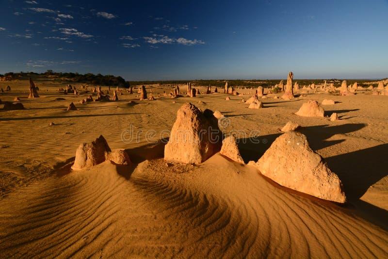 desertera höjdpunkter Nambung nationalpark cervantes Västra Australien australasian royaltyfri fotografi