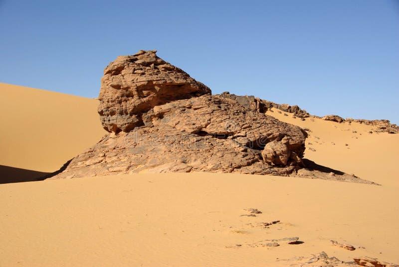 desertera libyerer royaltyfria bilder