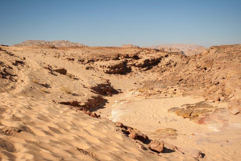 desertera sahara royaltyfri bild