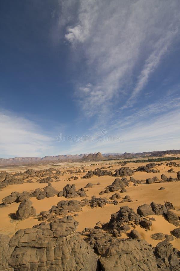desertic liggande arkivfoton