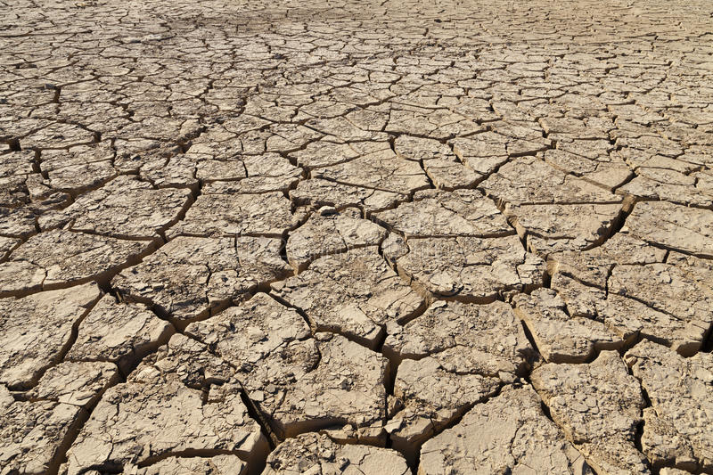 desertification lizenzfreie stockfotos