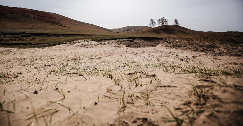 The desertification of land. Integration of the Ulan Buh grassland in Inner Mongolia of China, except the beautiful scenery outside, also let a person feel sad royalty free stock image