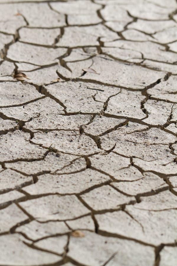 Deserto árido imagens de stock