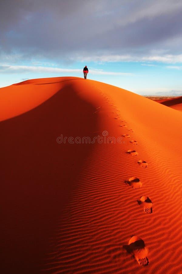 In deserto immagine stock