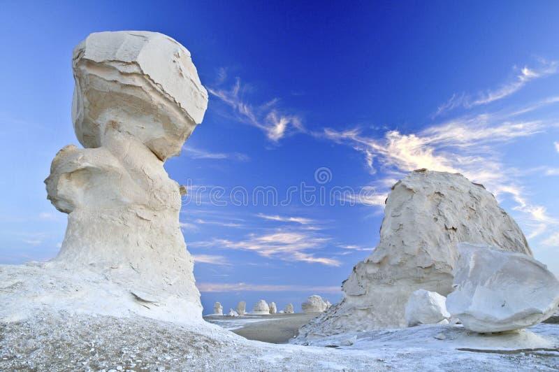 Deserto bianco fotografia stock libera da diritti
