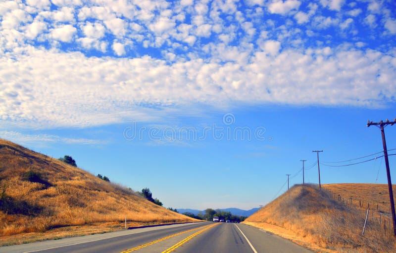 Deserto California della valle della strada dell'albero immagini stock libere da diritti