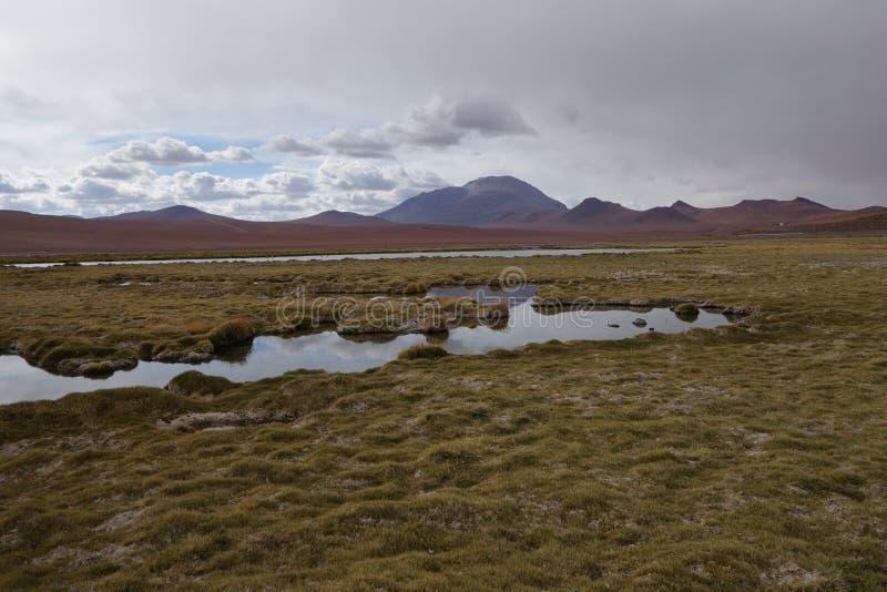 Deserto cileno immagine stock