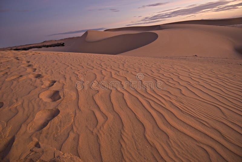 Deserto da areia imagem de stock
