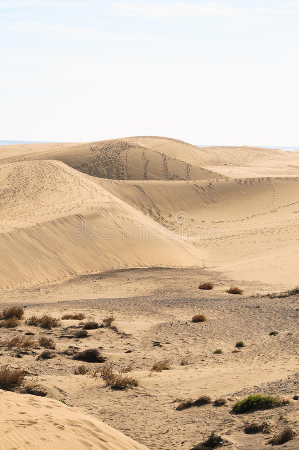 Deserto da duna de areia fotografia de stock royalty free