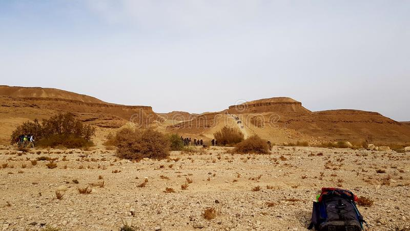 deserto da natureza da paisagem da terra da foto do ar fresco fotos de stock