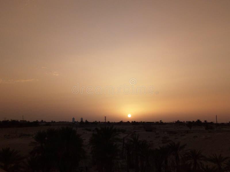 Deserto de Algérienne fotos de stock