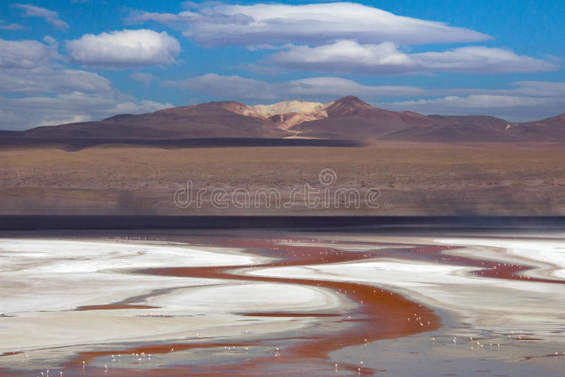Deserto de Atacama fotos de stock royalty free
