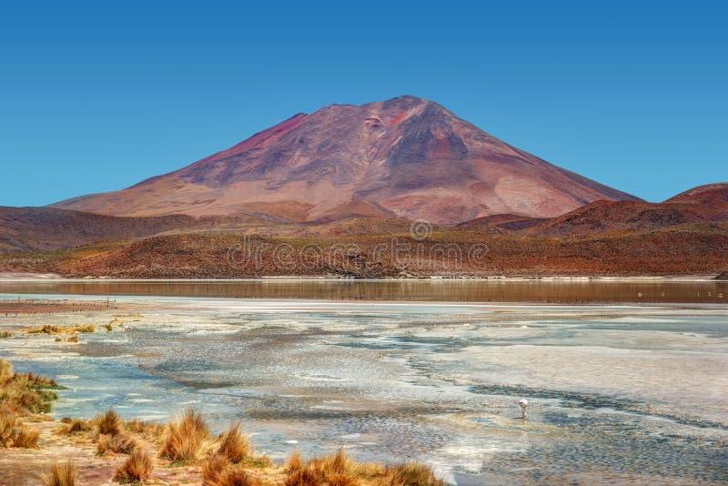 Deserto de Atacama Bolívia imagens de stock royalty free