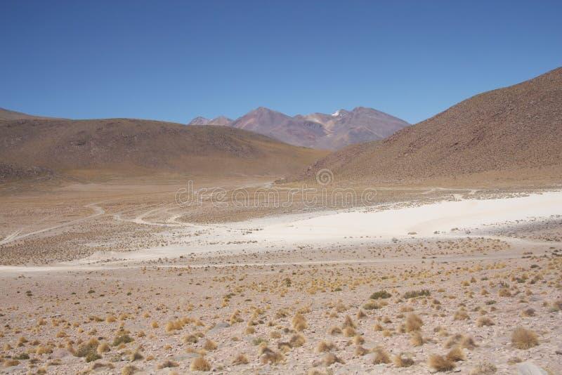 Deserto de Atacama, Bolívia imagem de stock