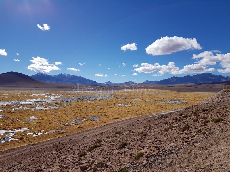 Deserto de Atacama chileno imagem de stock royalty free