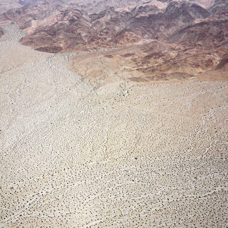 Deserto de Califórnia imagem de stock royalty free