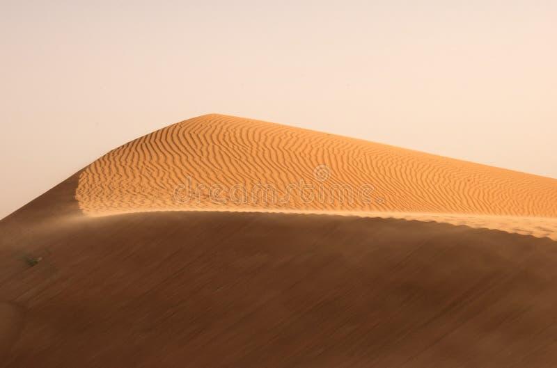 Deserto de Dubai imagem de stock royalty free