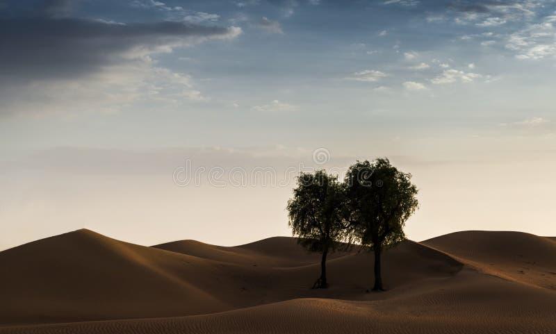 Deserto de Dubai imagens de stock royalty free