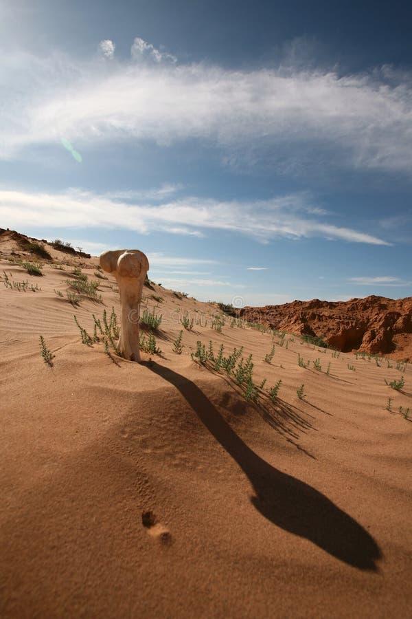 Deserto de Gobi cruel imagens de stock royalty free
