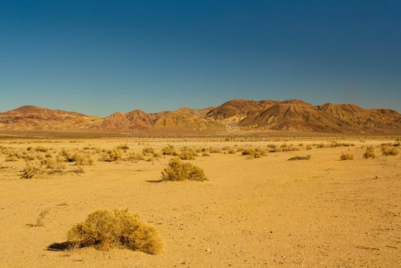 Deserto de Mojave fotografia de stock
