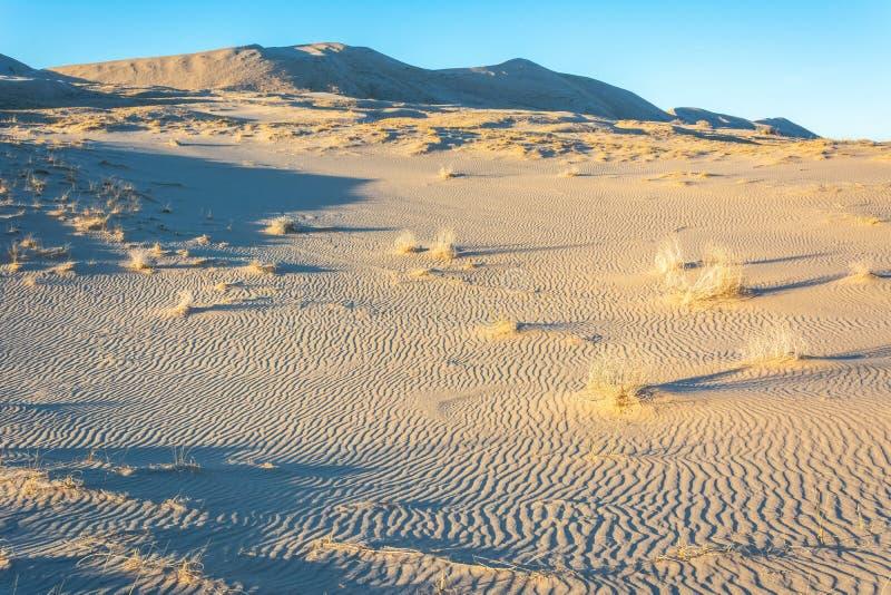 Deserto de Mojave em Califórnia foto de stock