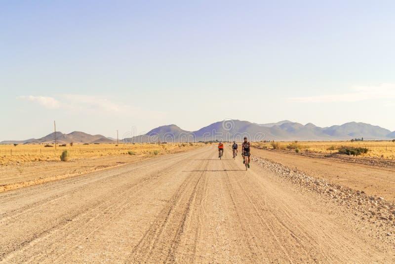 Deserto de Namib perto do solitário imagem de stock