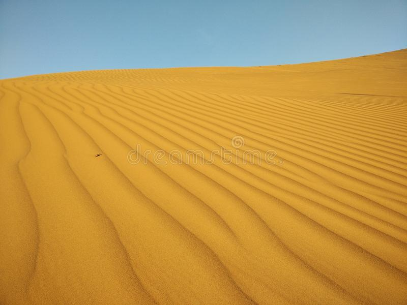 Deserto de Sahara alaranjado foto de stock