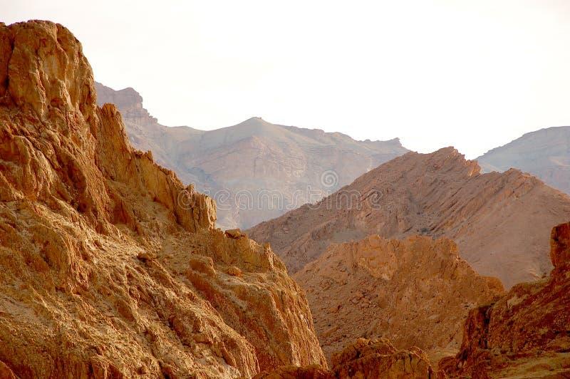Deserto de Sahara do verão em Tunísia imagens de stock