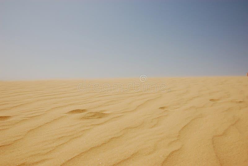 Deserto de Sahara do verão em Tunísia fotografia de stock royalty free