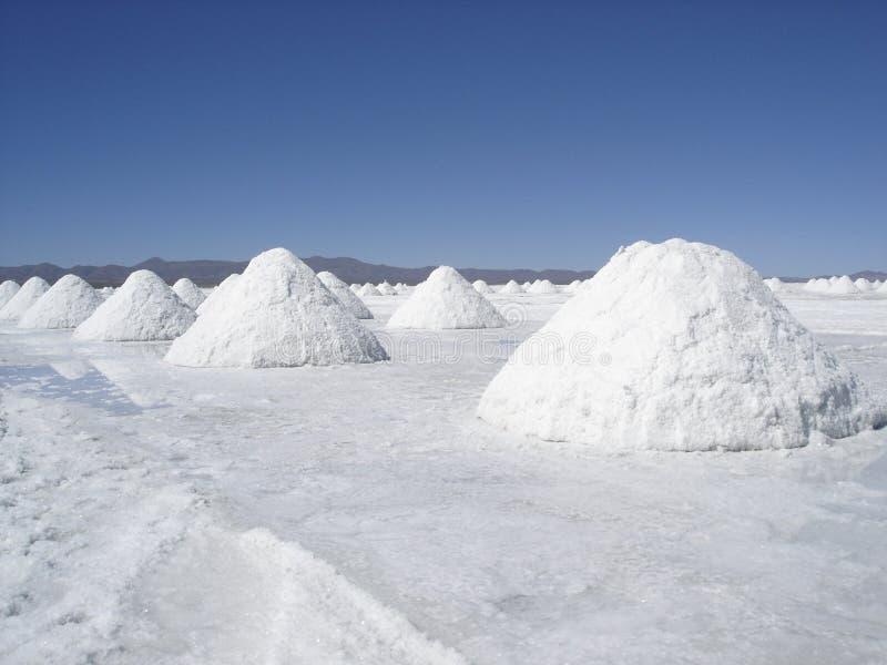 Deserto de sal imagens de stock royalty free