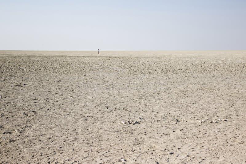 Deserto de sal em Namíbia fotos de stock