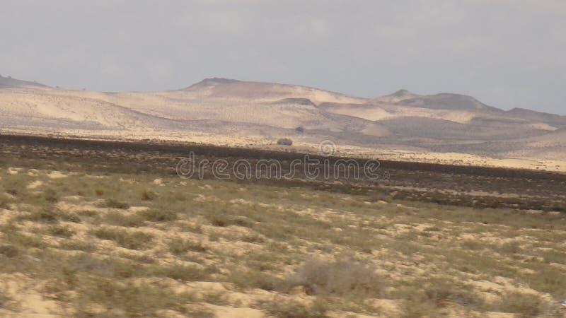 Deserto de Sinai no deserto de Egito Sinai em Egito é um grande deserto imagens de stock royalty free