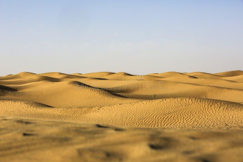 Deserto de Taklimakan foto de stock