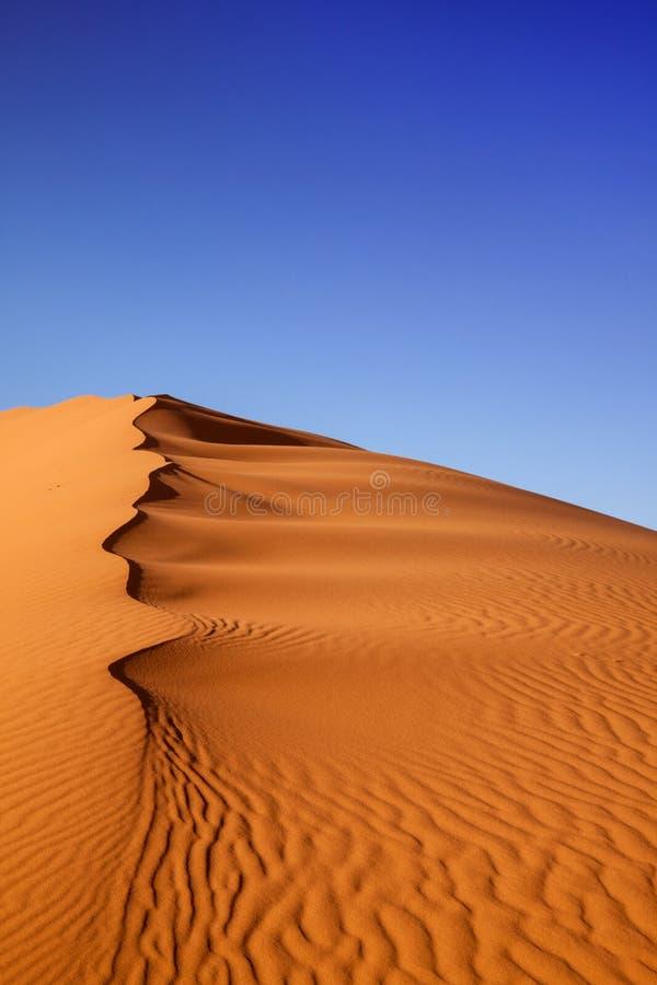 Deserto del Marocco delle dune di sabbia immagini stock libere da diritti