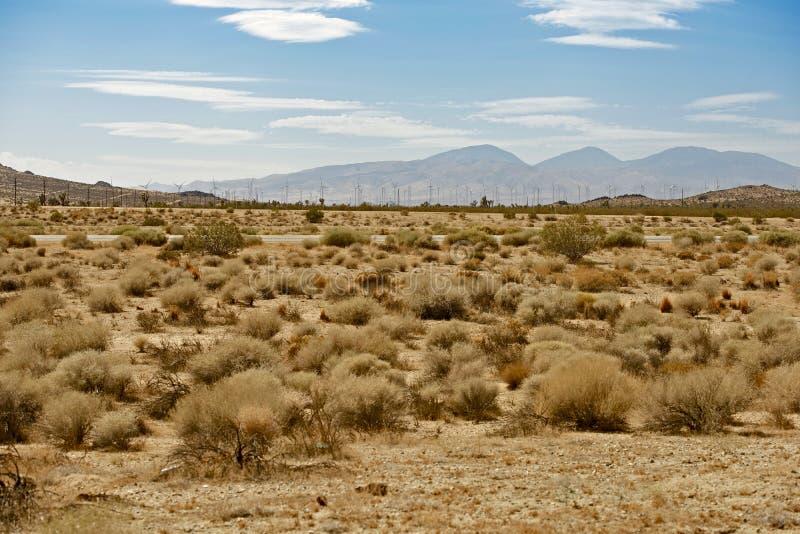 Deserto del Mojave US14 immagini stock libere da diritti