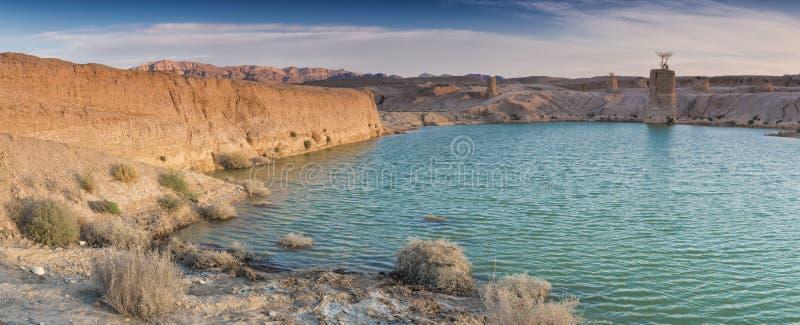 Deserto del Negev dopo pioggia immagine stock libera da diritti