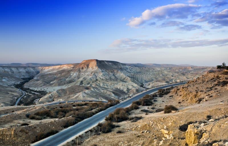 Deserto del Negev vicino a Sde-Boker, Israele fotografia stock