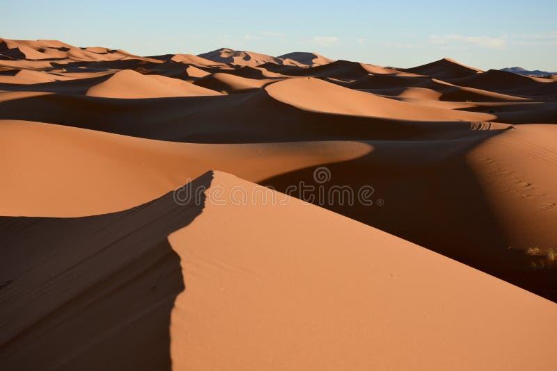 Deserto del Sahara immagini stock libere da diritti