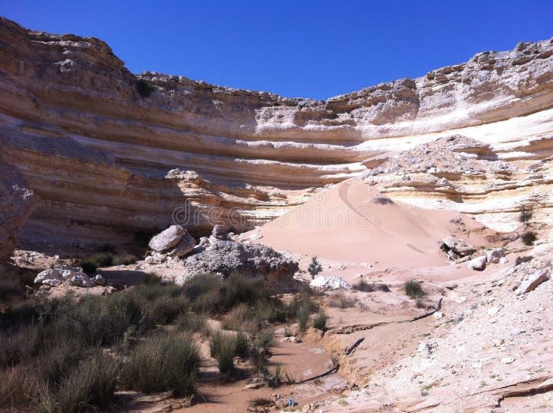 Deserto dell'Oman fotografie stock libere da diritti