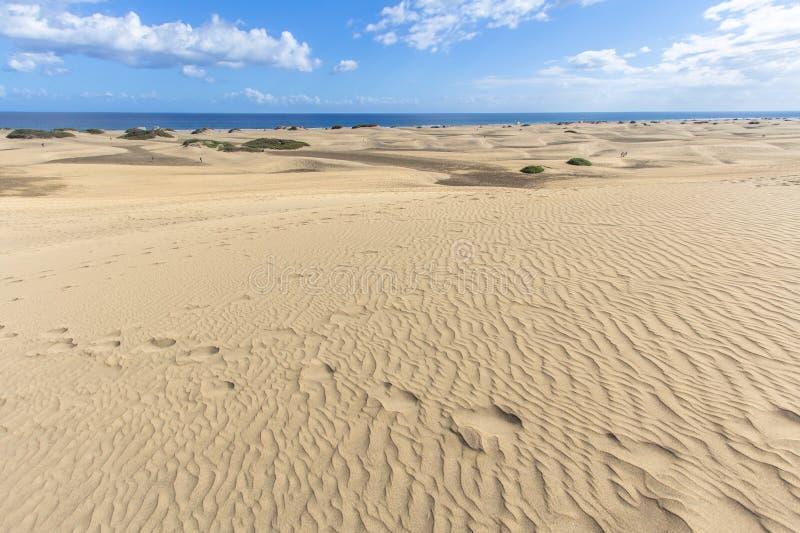 Deserto della duna di sabbia di Maspalomas, grande Canaria immagine stock