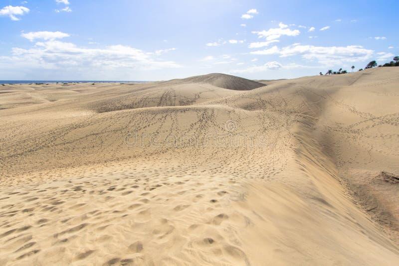 Deserto della duna di sabbia di Maspalomas, grande Canaria immagini stock