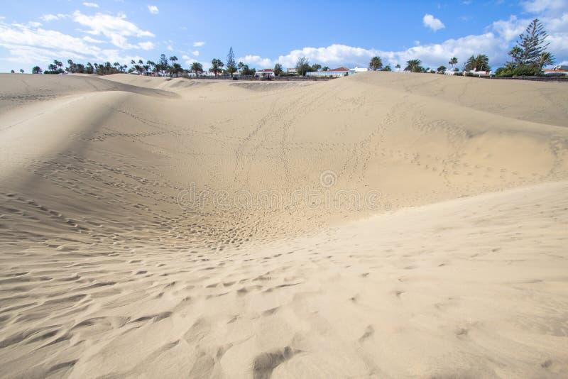Deserto della duna di sabbia di Maspalomas, grande Canaria fotografia stock libera da diritti